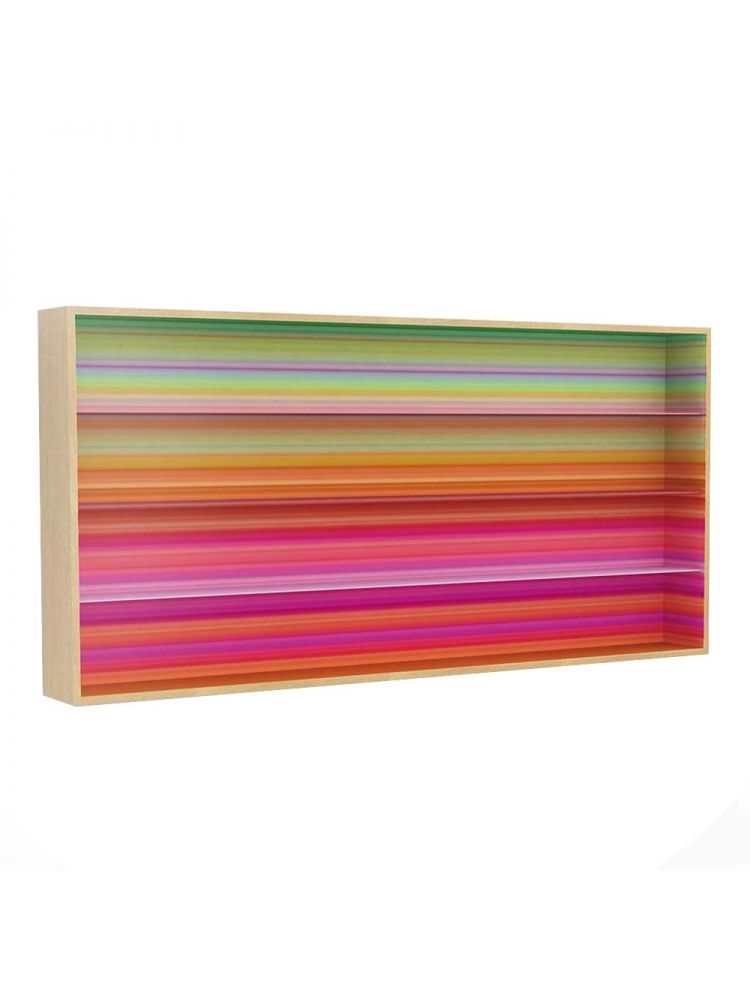 Color Fall Bookshelf