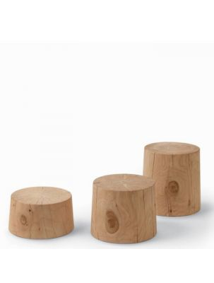 Legno Vivo Coffee Table